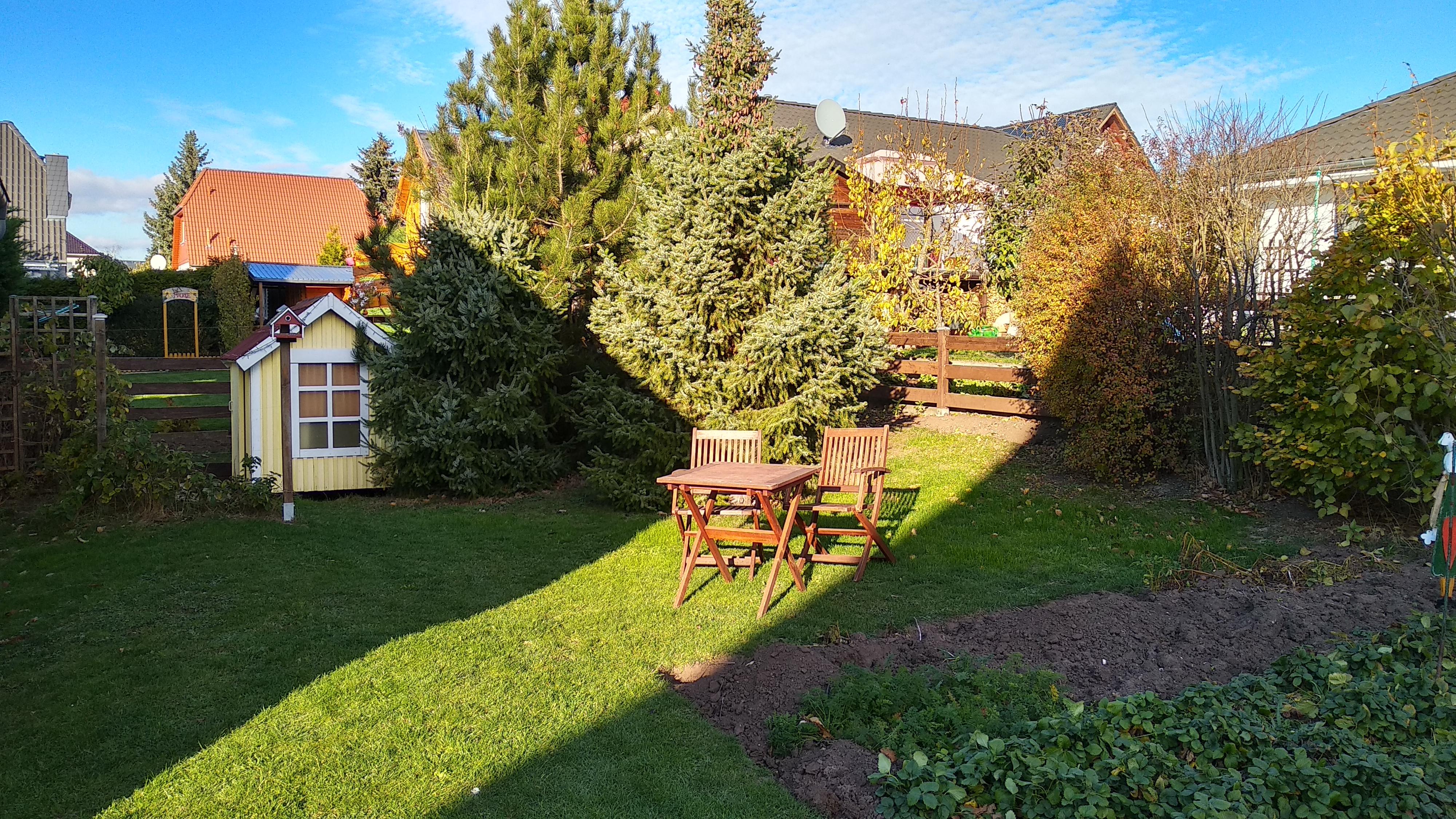 Einfamilienhaus in Sennewitz - Blick in den Garten