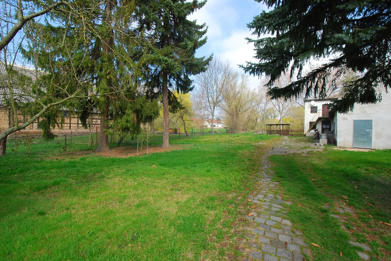 Einfamilienhaus Halle-Radewell - Blick in den Garten