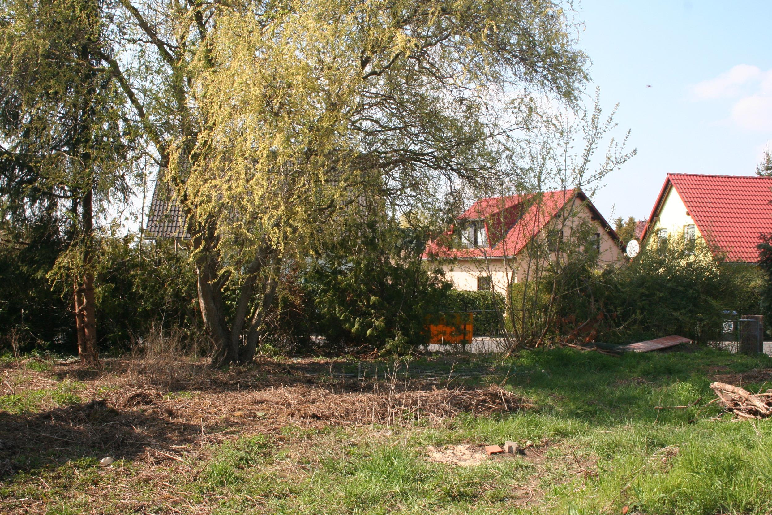 Einfamilienhaus Halle-Seeben - Blick in den Garten