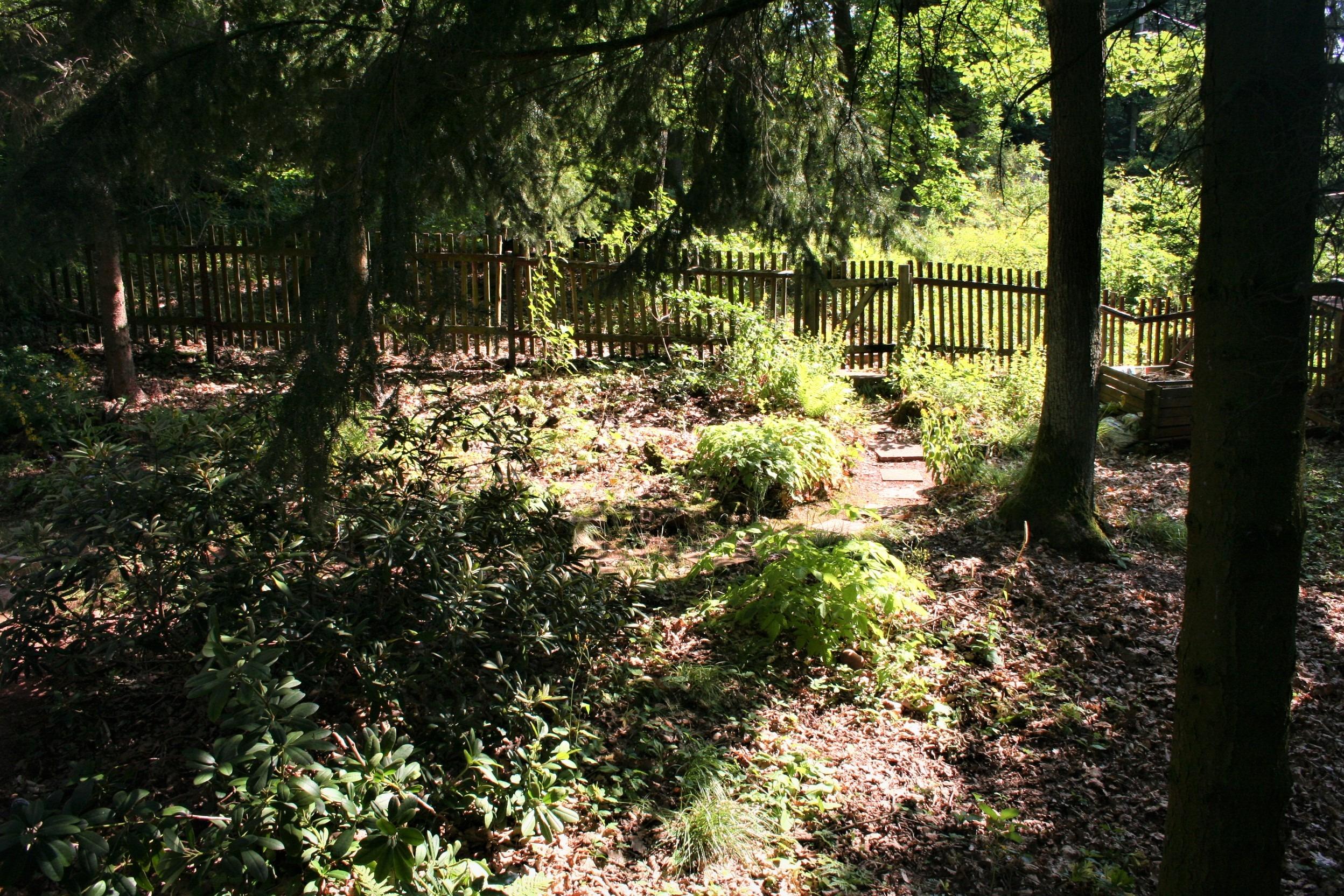 Wochenendgrundstück in Gorenzen - Natur pur - Blick in den oberen Garten