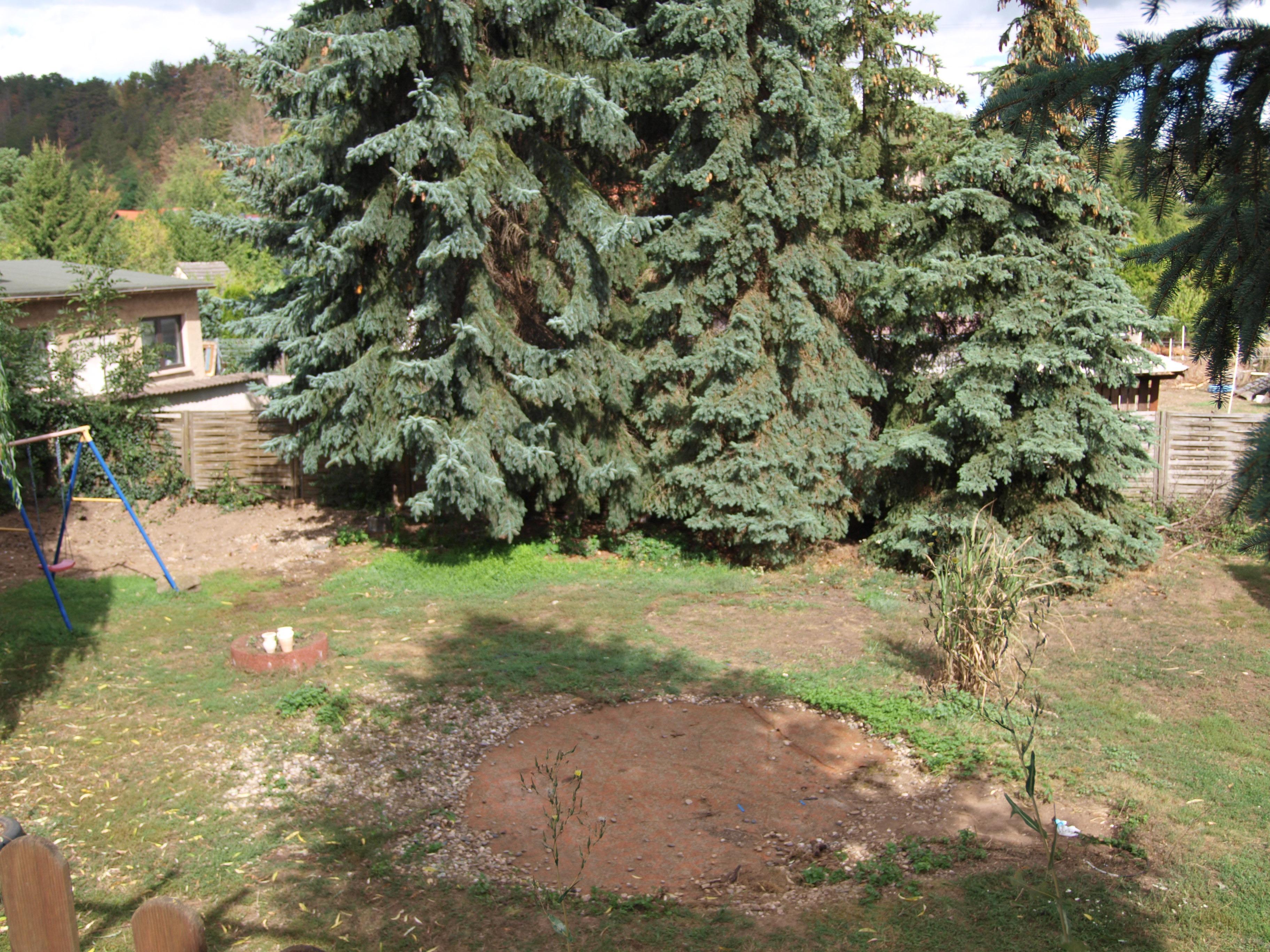 Einfamilienhaus Mansfeld - Blick von der Terrasse auf das Grundstück