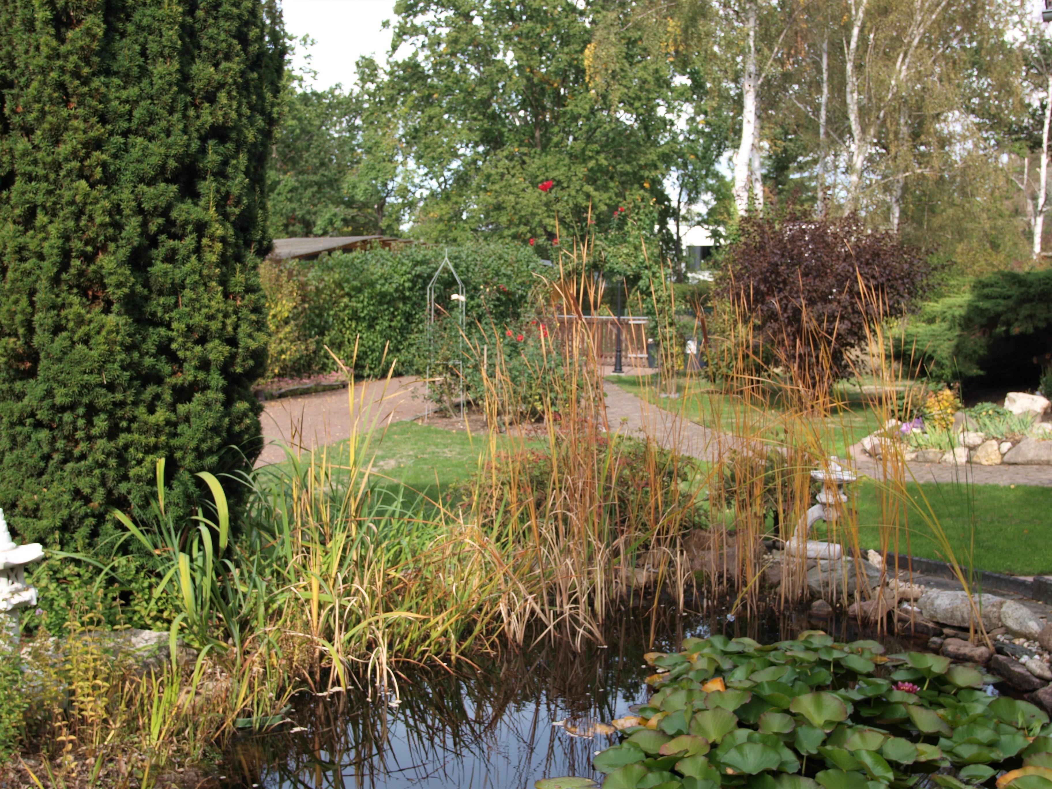 Einfamilienhaus Kröllwitz - Blick in den Garten