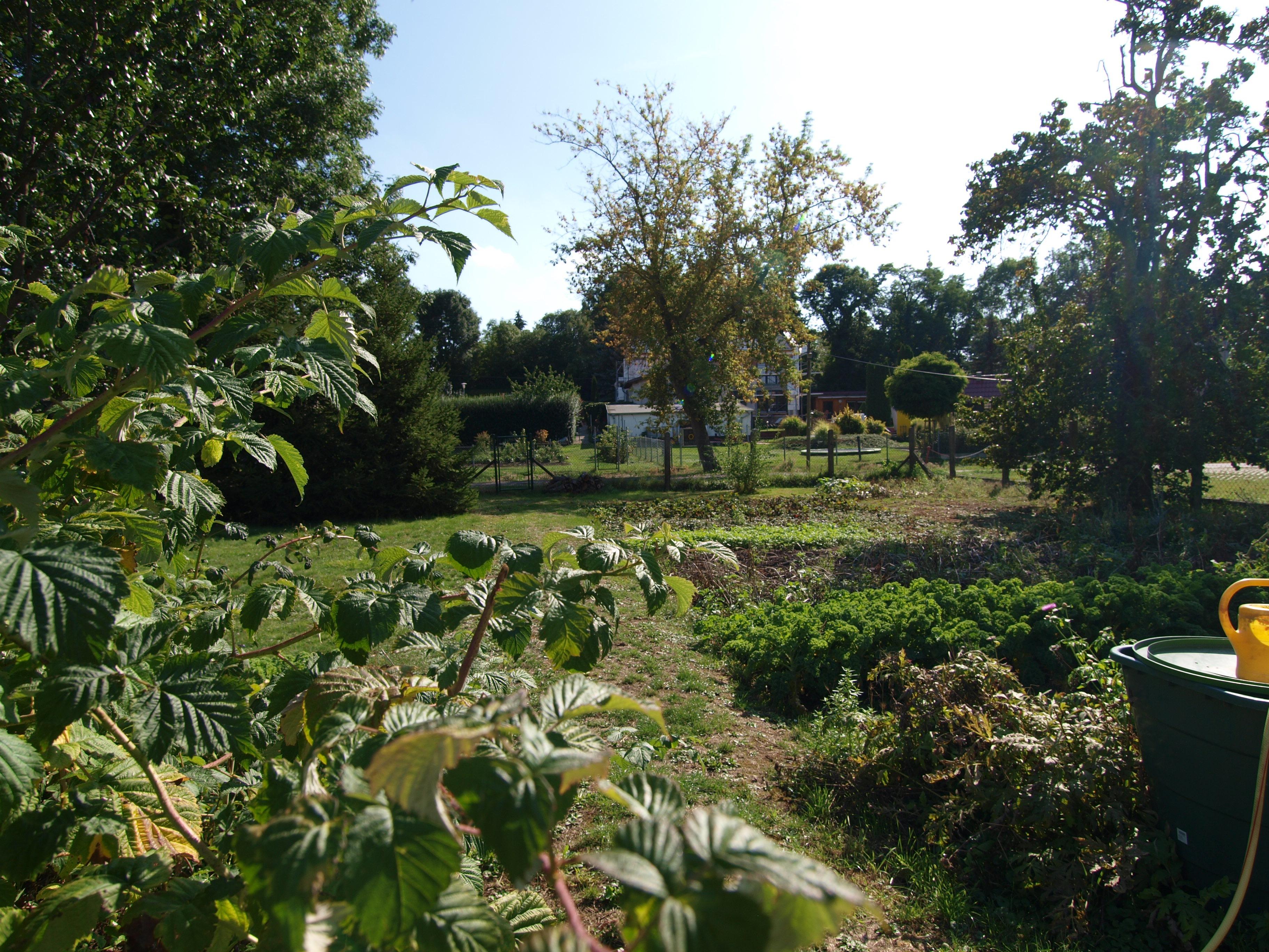 Einfamilienhaus Rottelsdorf - Gartenansicht