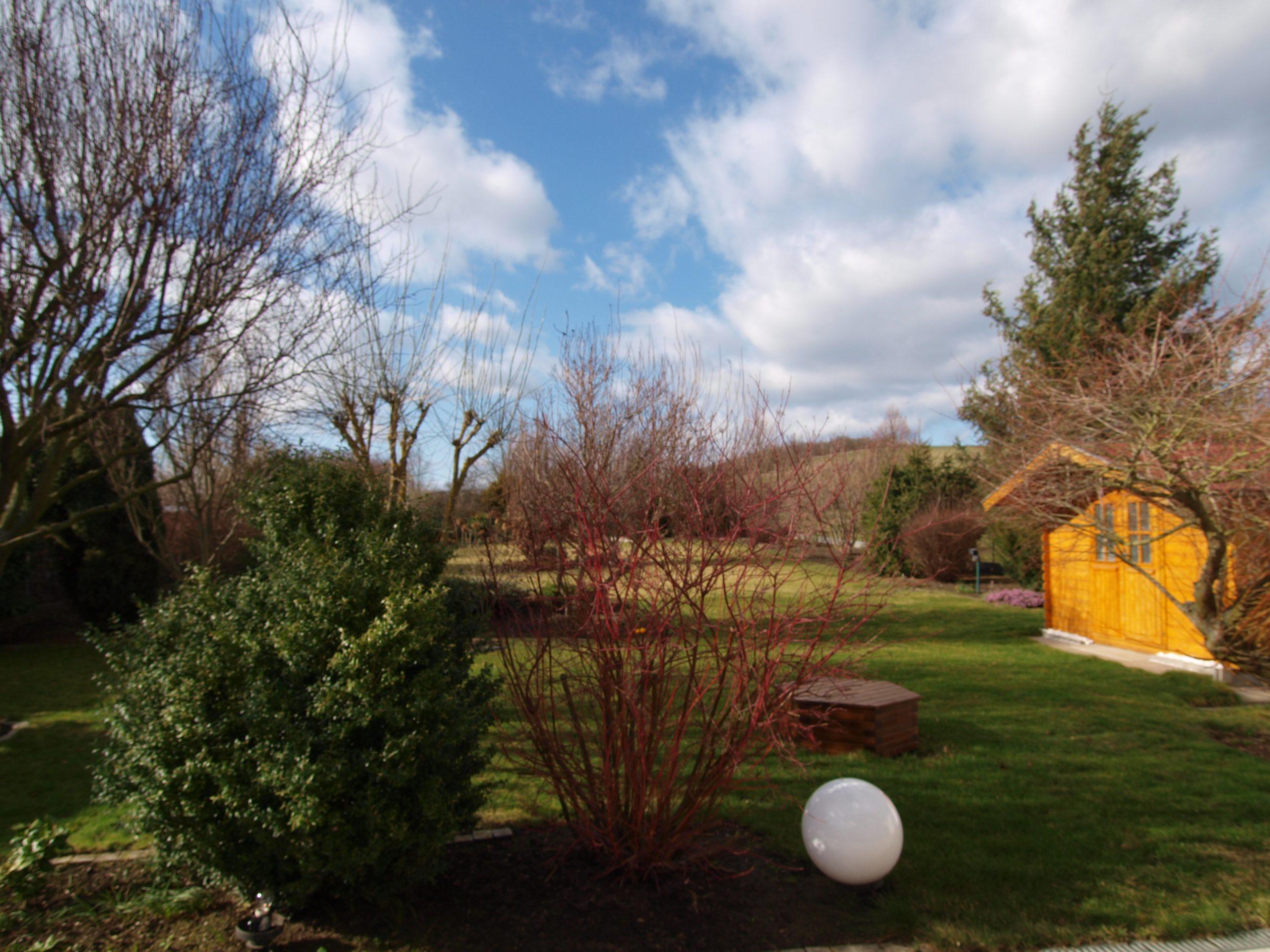 Einfamilienhaus Mötzlich - Blick auf das Grundstück und den Lehmberg