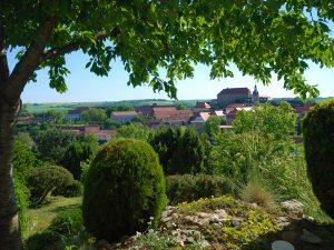 Wochenendgrundstück in Wettin - Blick von der Terrasse