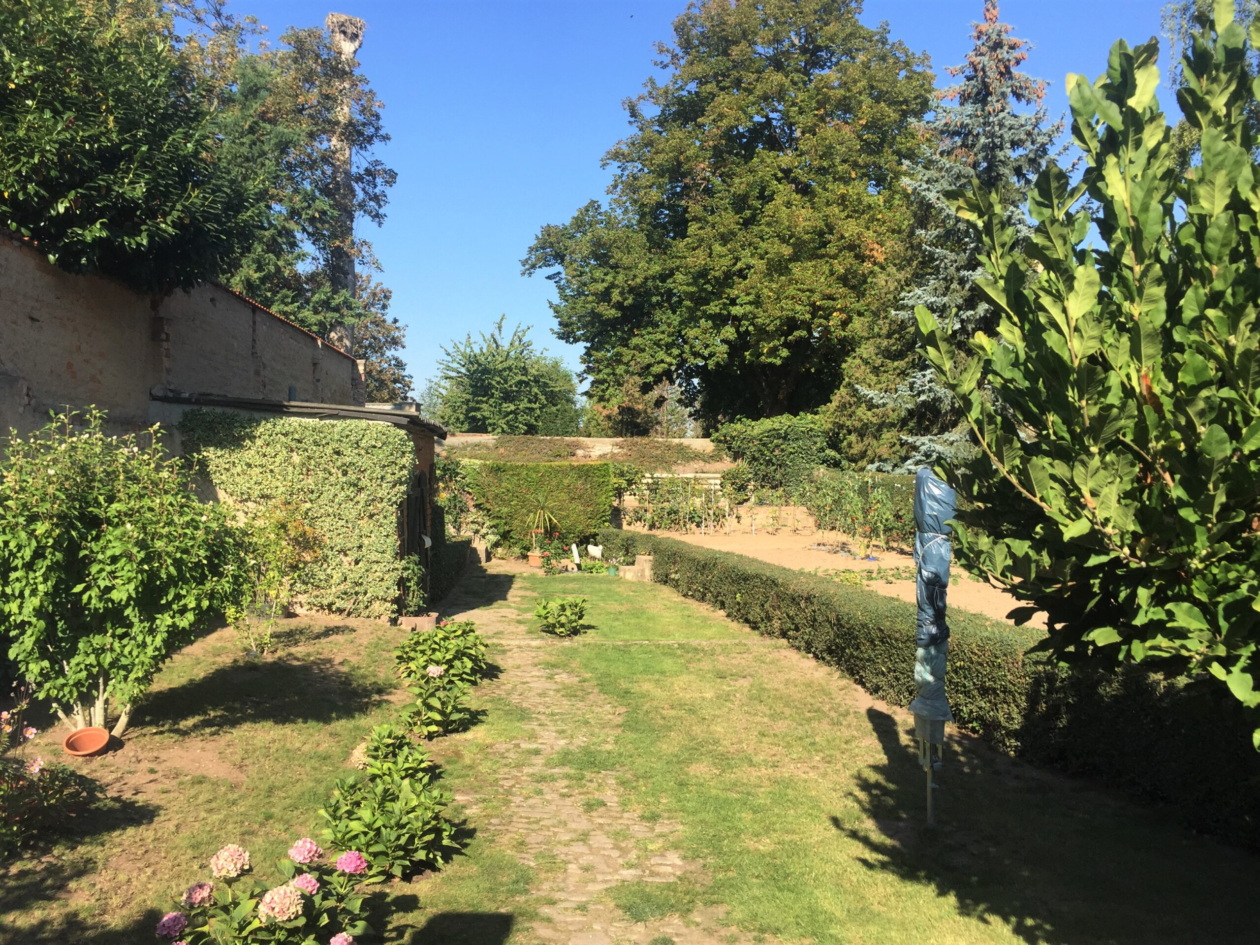 Einfamilienhaus in Gnölbzig - Garten