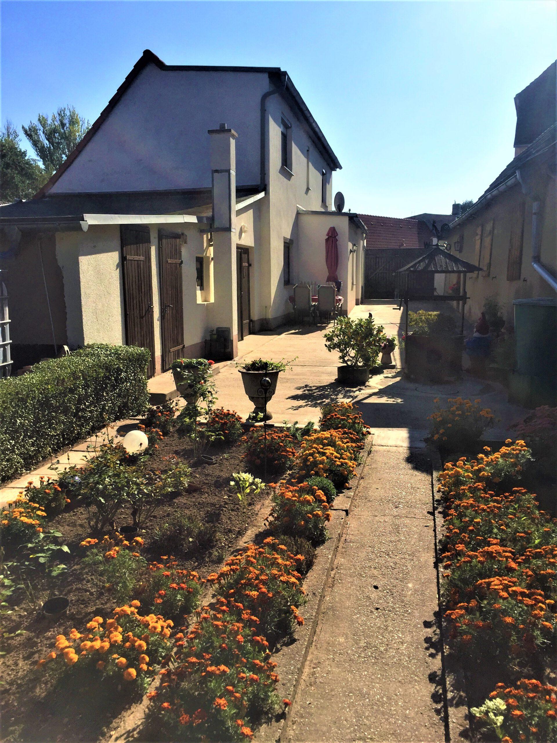 Einfamilienhaus in Gnölbzig - Blick zum Haus vom Garten