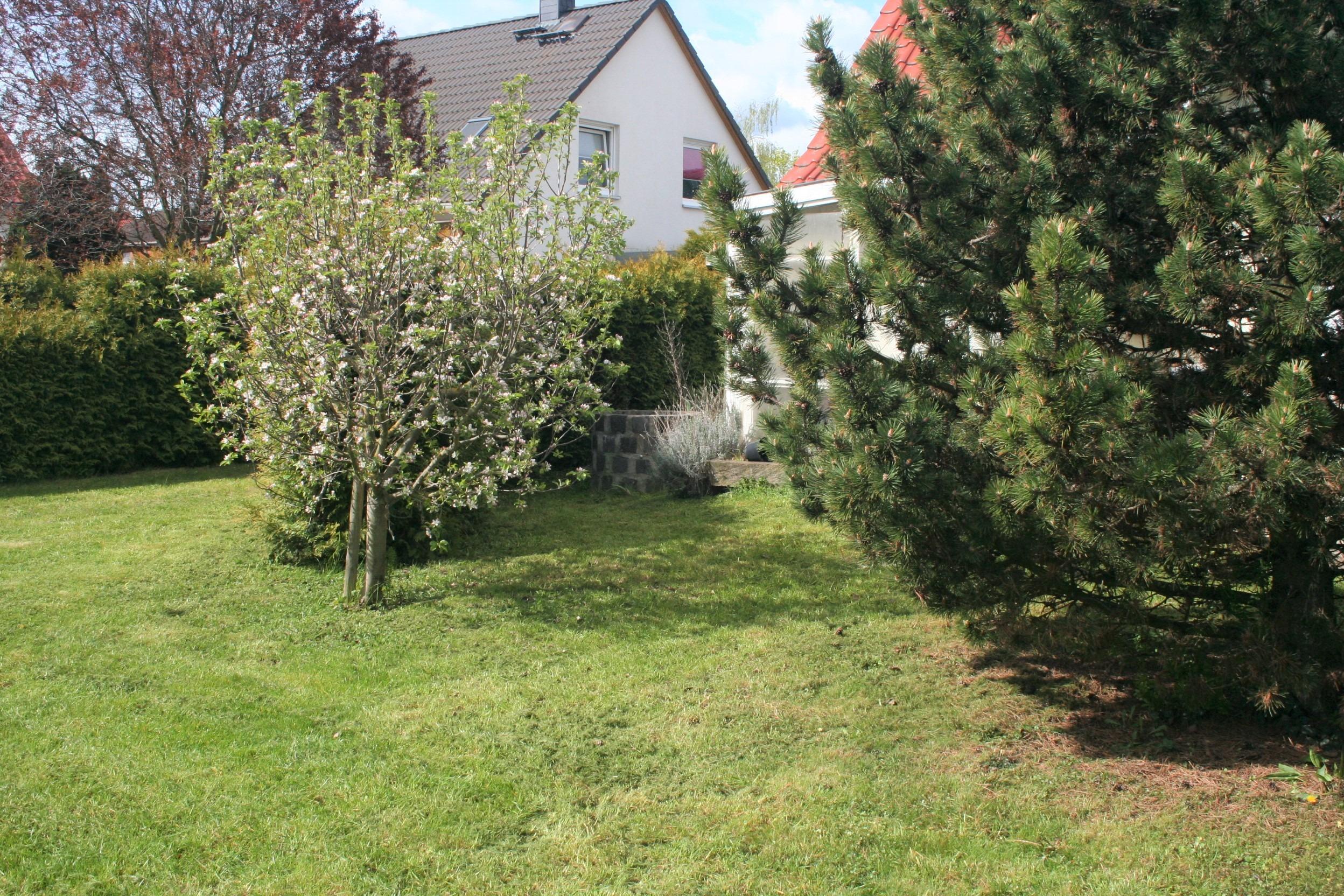 Einfamilienhaus Merseburg - Blick zum Wintergarten