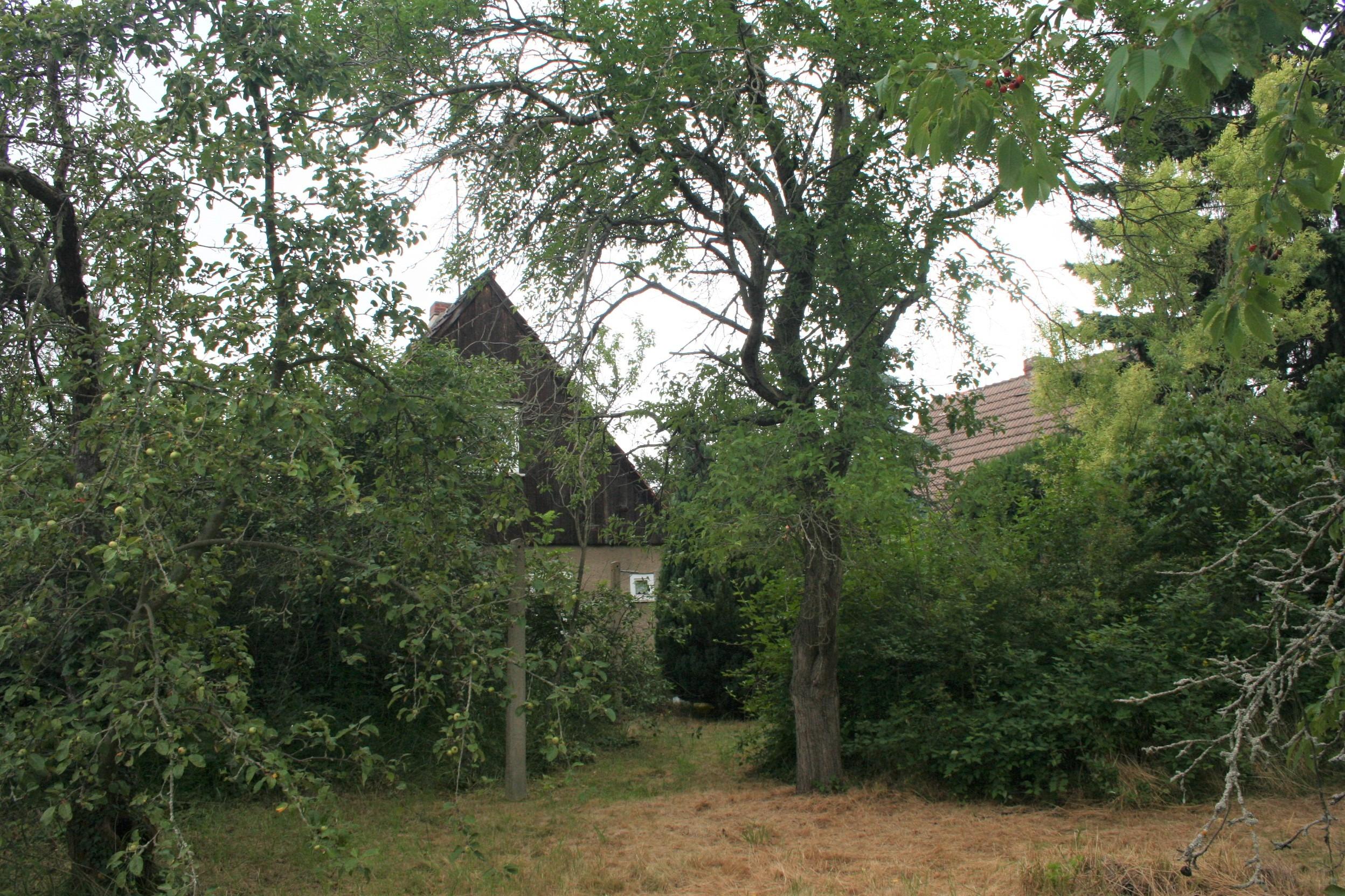Einfamilienhaus Frohe Zukunft - Gartenblick